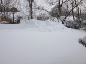 This used to be my driveway and backyard. Hence, being unable to go get the missing ingredients.